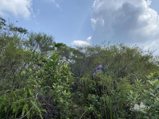 Hiking 4.10.2020 Fung Hang (21)