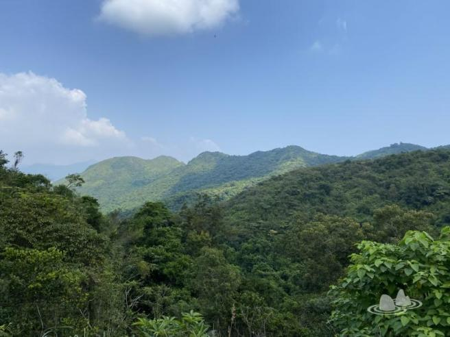 Hiking 4.10.2020 Fung Hang (33)