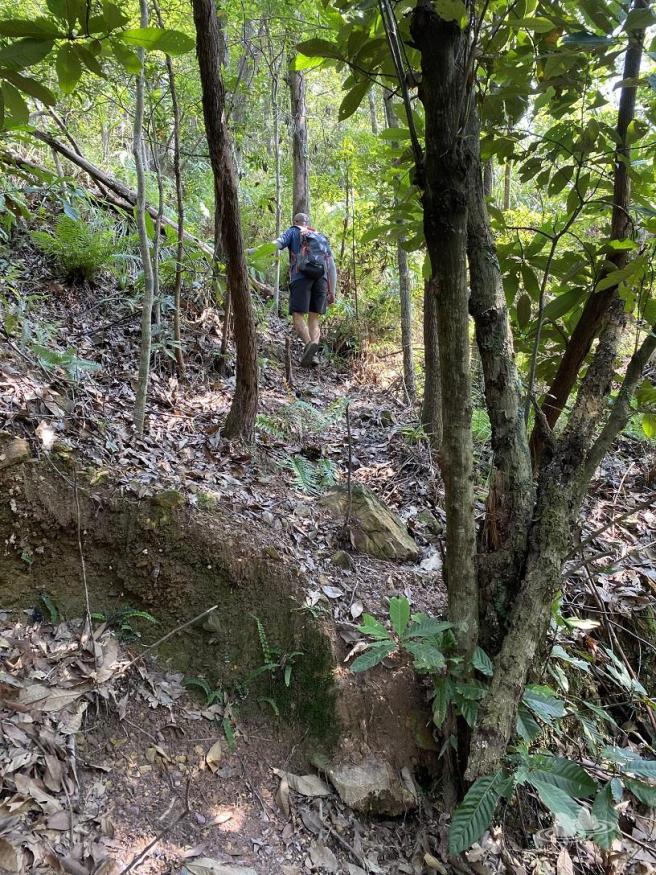 Hiking 4.10.2020 Fung Hang (5)