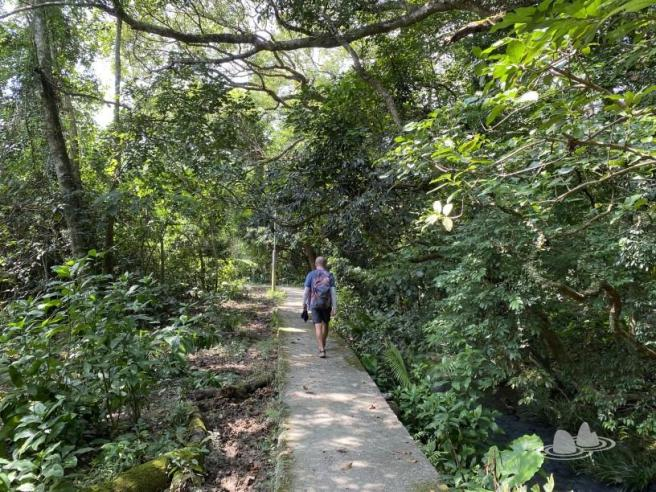 Hiking 4.10.2020 Fung Hang (53)