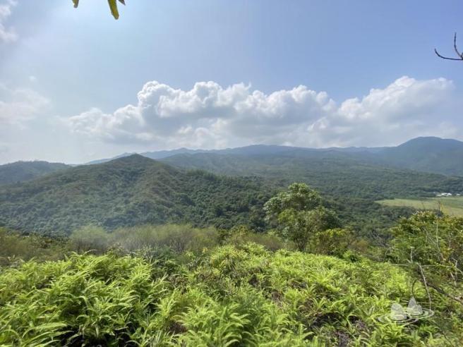 Hiking 4.10.2020 Fung Hang (9)