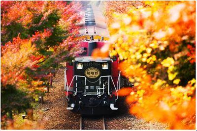 嵐山小火車楓葉季
