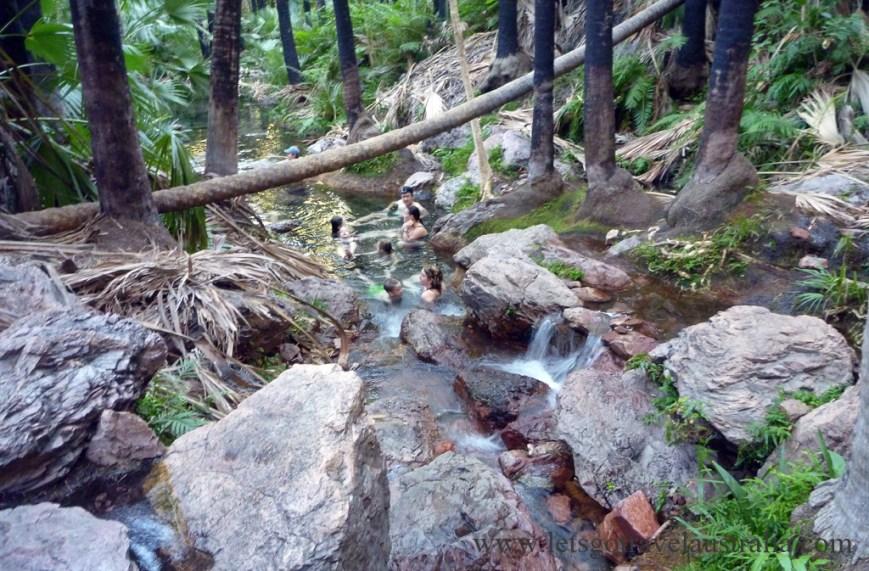 Zedebee-Springs-2
