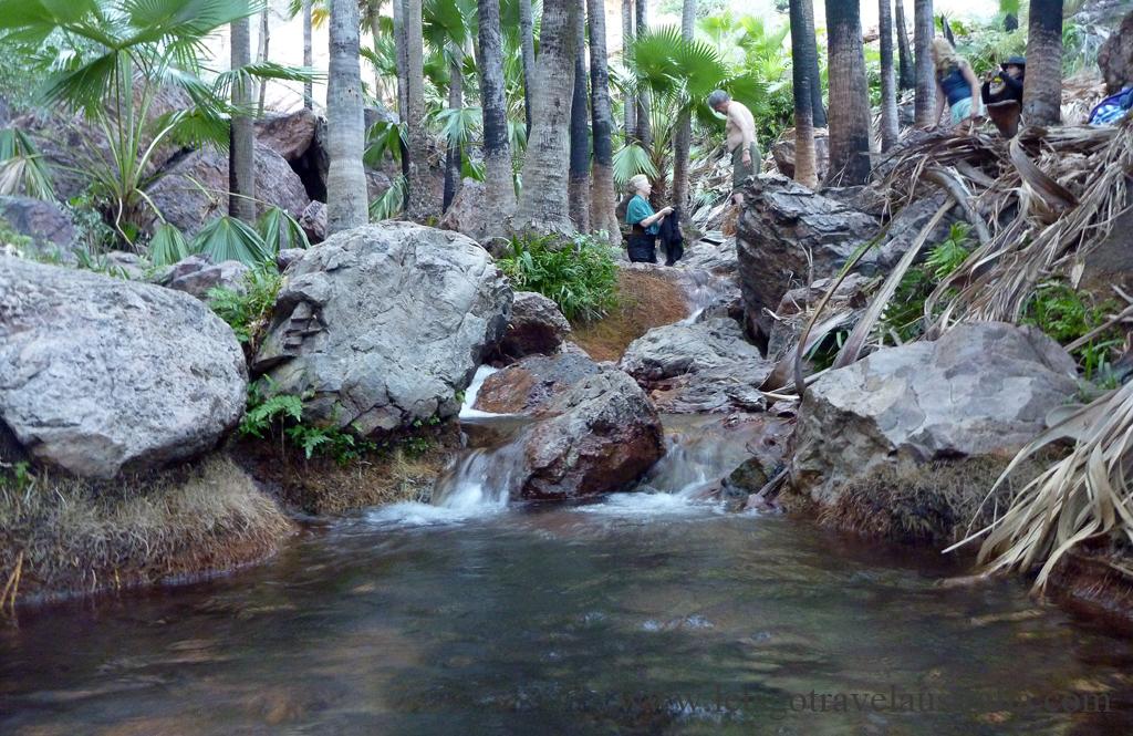 Zedebee-Springs-3