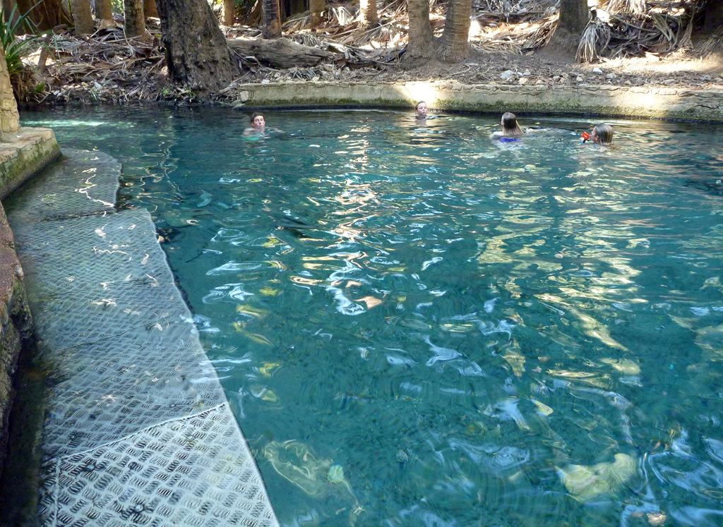 Mataranka-Thermal-Pools-2