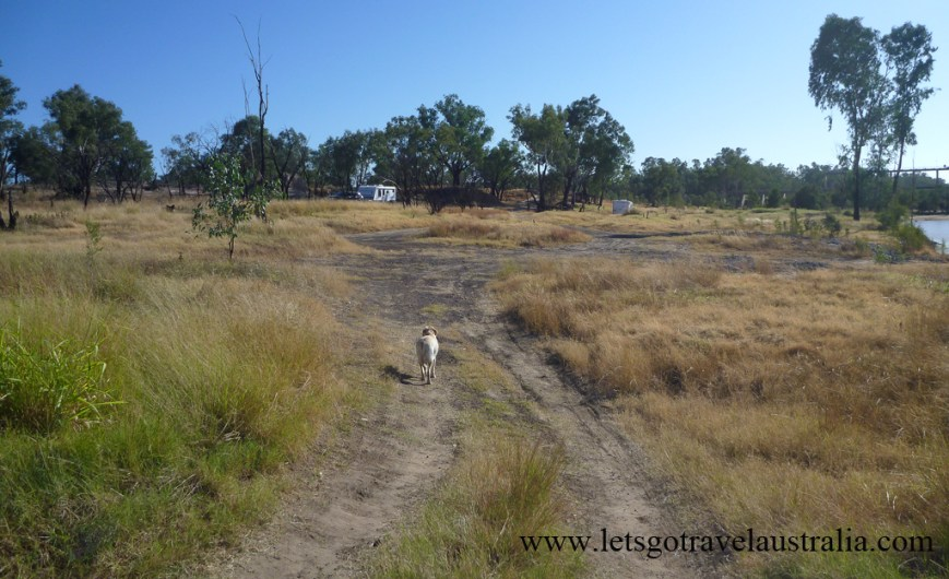 Camp-area-at-Balonne-River-St-George-2
