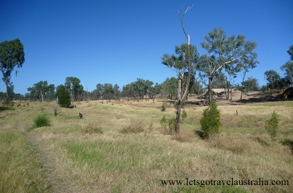 Camp-area-at-Balonne-River-St-George-4