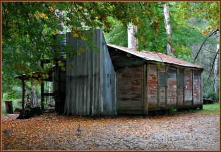 Pickering Hut