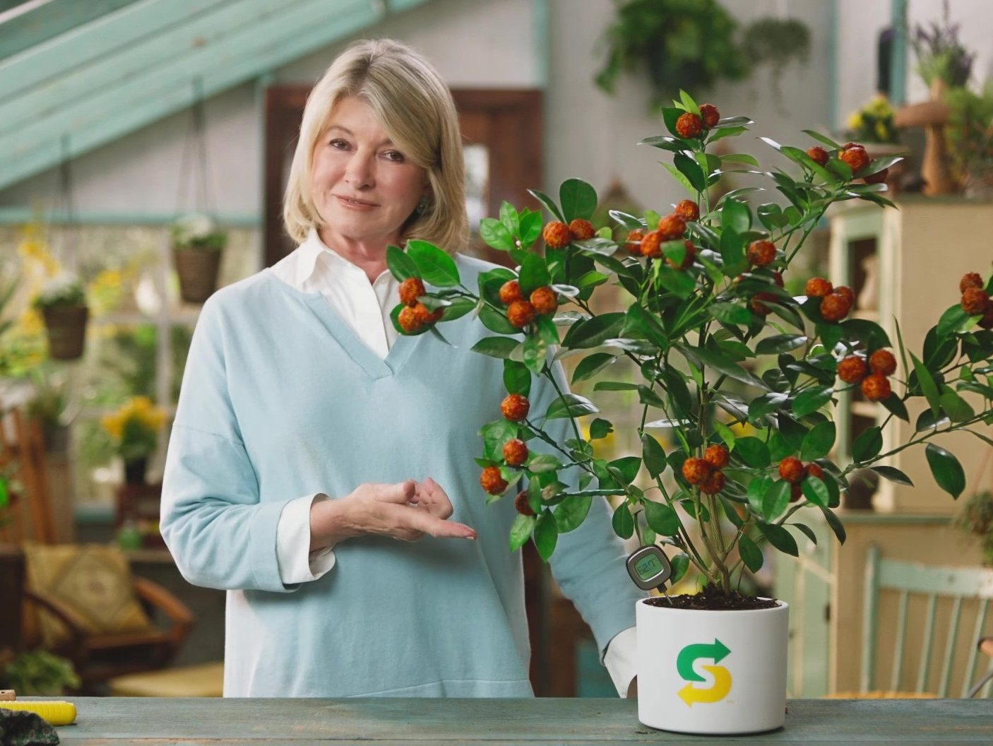 Martha Stewart promotes a plant-based sub for Subway