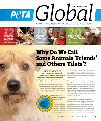 PETA Global Magazine - Second Edition