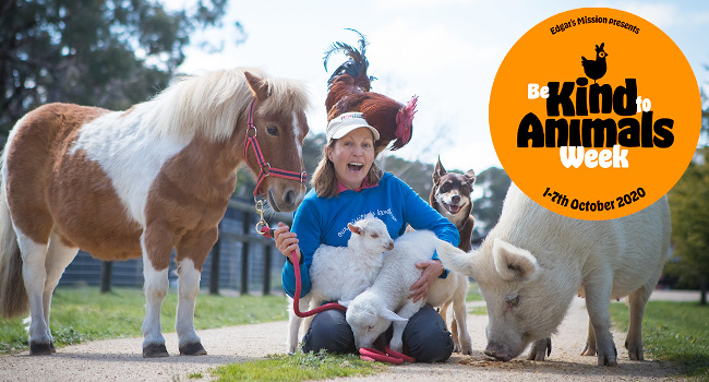 Be Kind To Animals Week 2020