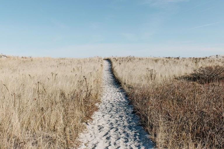 sandy pathway