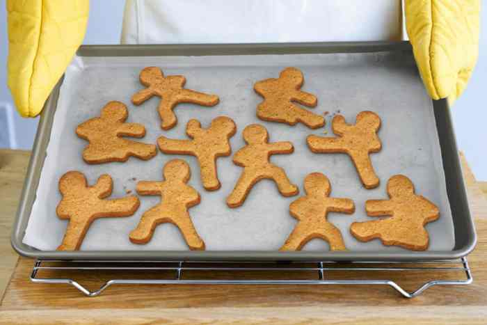 Ninja Gingerbread Cookie Cutters *Too cool