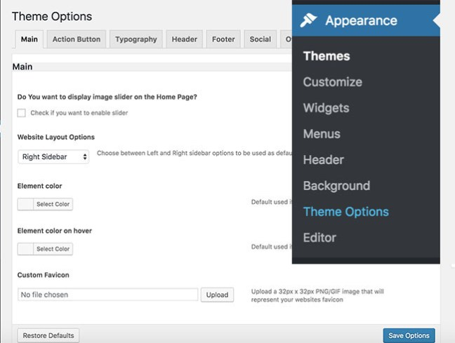 Wordpress Theme Options copy