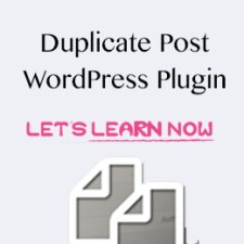 How to use duplicate Post Wordrpess Plugin