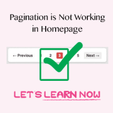 WordPress Pagination is not working in Homepage