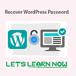 How to Recover WordPress Password for Beginners