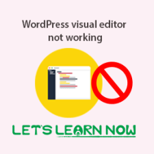 WordPress visual editor not working fratured image
