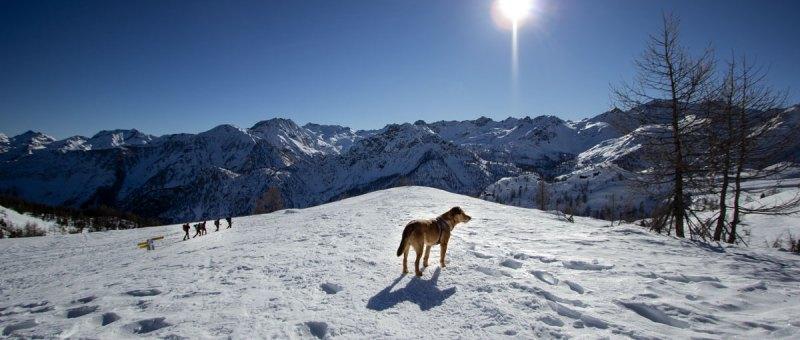 Escursione al Lago Muffé da Mont Blanc