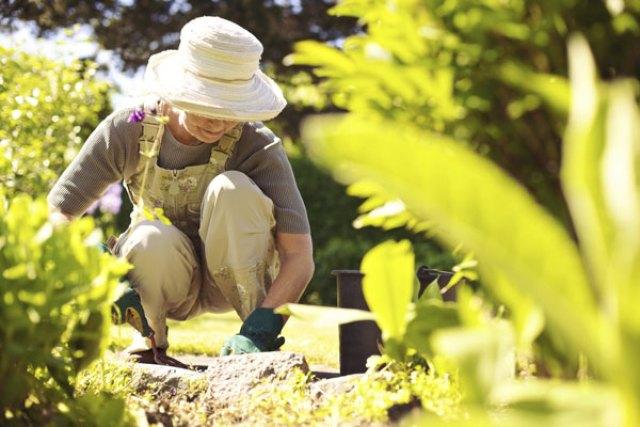 Smart-Gardening