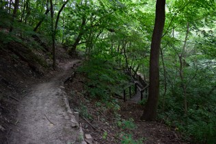 Stephens Park - The trails are generally easy to walk, and a great place for beginner Mountain Bikers to get experience.