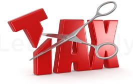 Impact of Tax Haven on Businesses | How Do Tax Havens Work