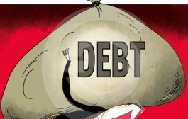 The Recent Upsurge in the Public Sector's Bad Loan Problems: Causes and Effects