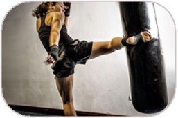 Muay Thai MMA Bags Reviews