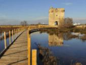 Tour Carbonnière - Aigues Mortes - Petite Camargue