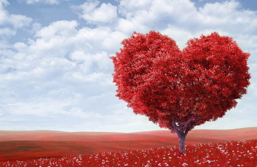 organic-valentines-day-gifts-1140x664