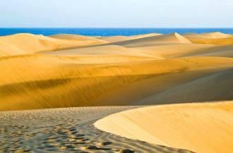 corraloe-dunes