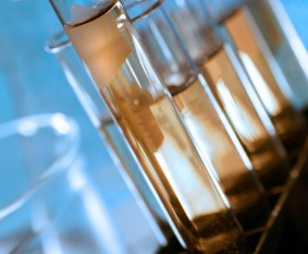Clear cylinders--test tubes--with somethiing tan-colored in each plus a liquid, against a blue background. Other lab glassware pieces are visible in the background.