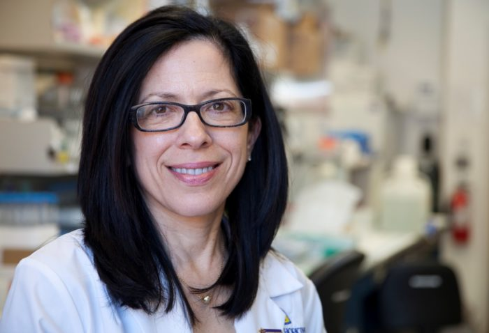 Dr. Elizabeth Jaffee, cancer researcher, in a laboratory
