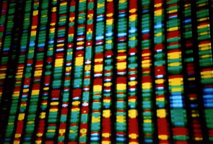 The ABCs Of Genetic Testing
