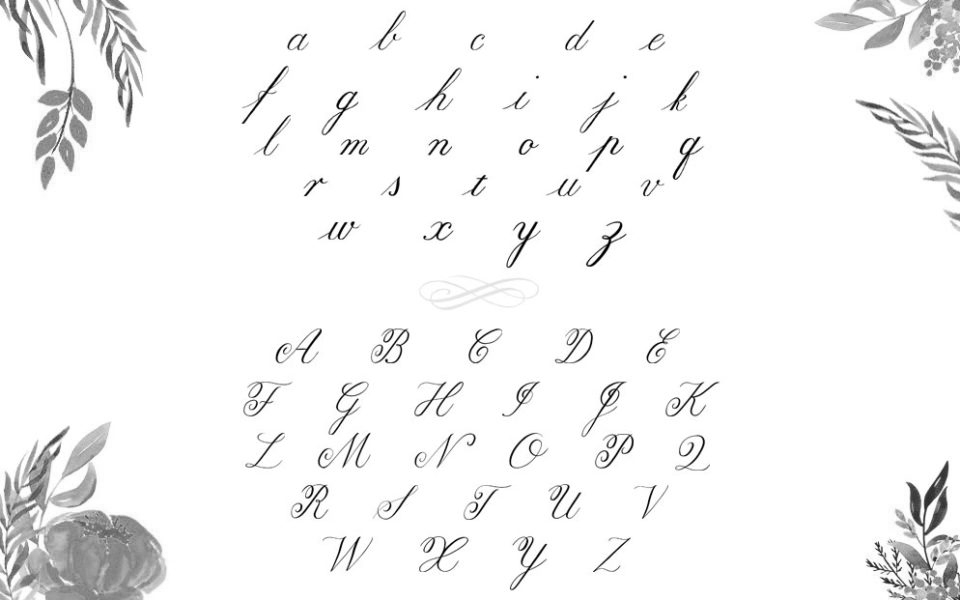 Copperplate Alphabet Nicole Mauloni - Lettering Tutorial