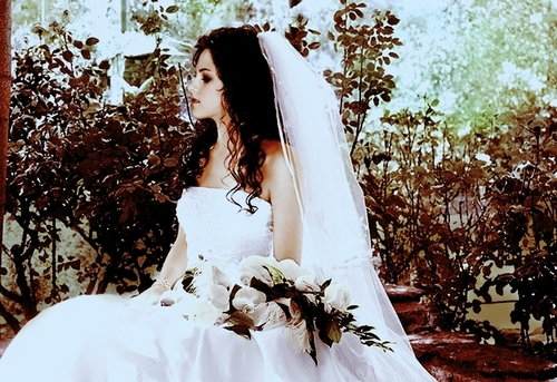 bella-s-wedding-twilight-series-6053356-500-343