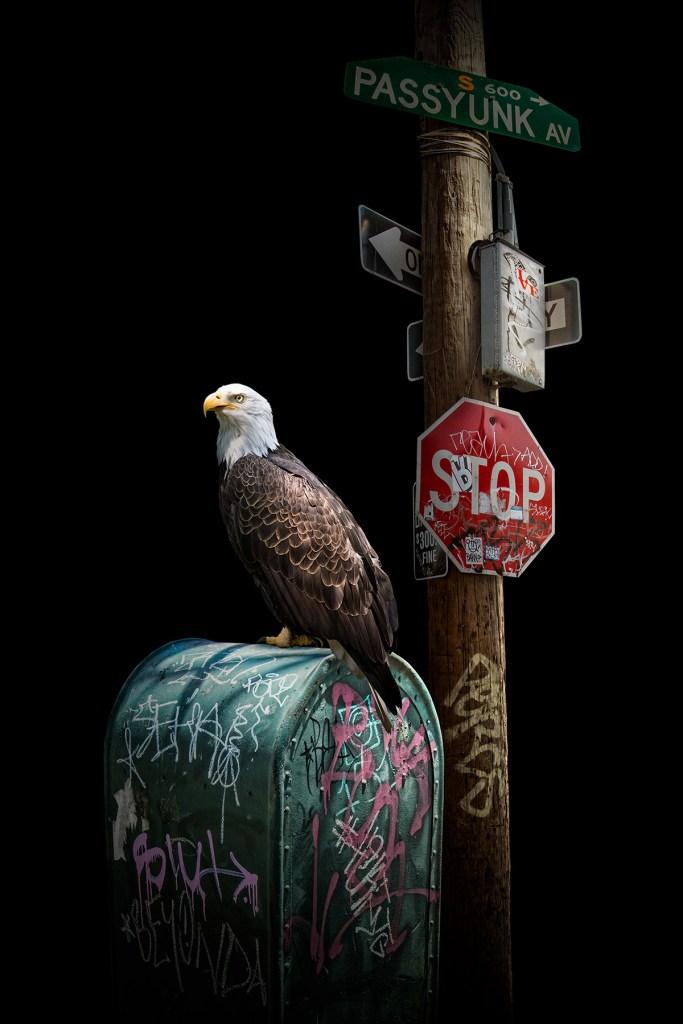 «Guardians» - Hommage à la ville de Philadelphie, et créé comme un avantage pour le Fleisher Art Memorial. Nick Pedersen