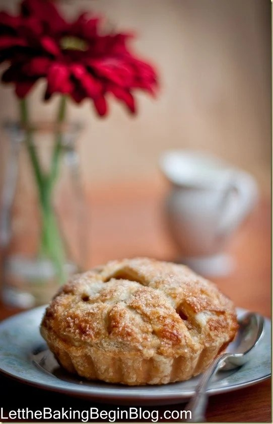 Apple pie on a blue decorative plate with a spoon.