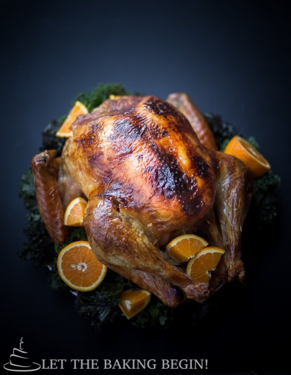 Thanksgiving Roasted Turkey Recipe (Brine Method) + 18 Tips for Success