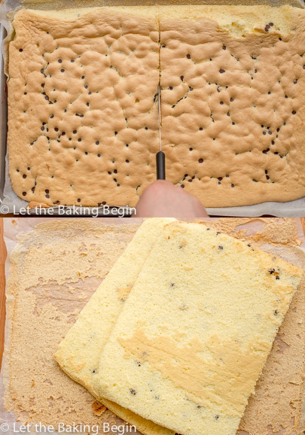How to cut the baked sponge cake with chocolate chips.