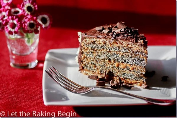 slice of poppy seed cake topped with chocolate cravings on a white plate.