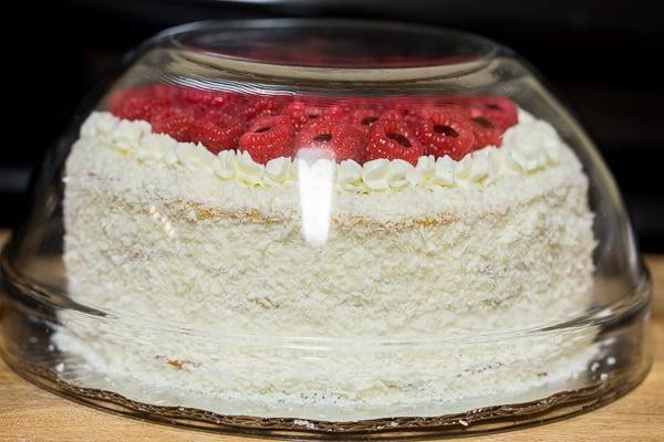 Milky Girl Cake covered before serving.