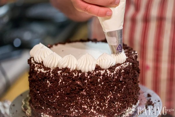 This cake is perfect for a novice or experienced baker! The cake decor is easy yet impressive!
