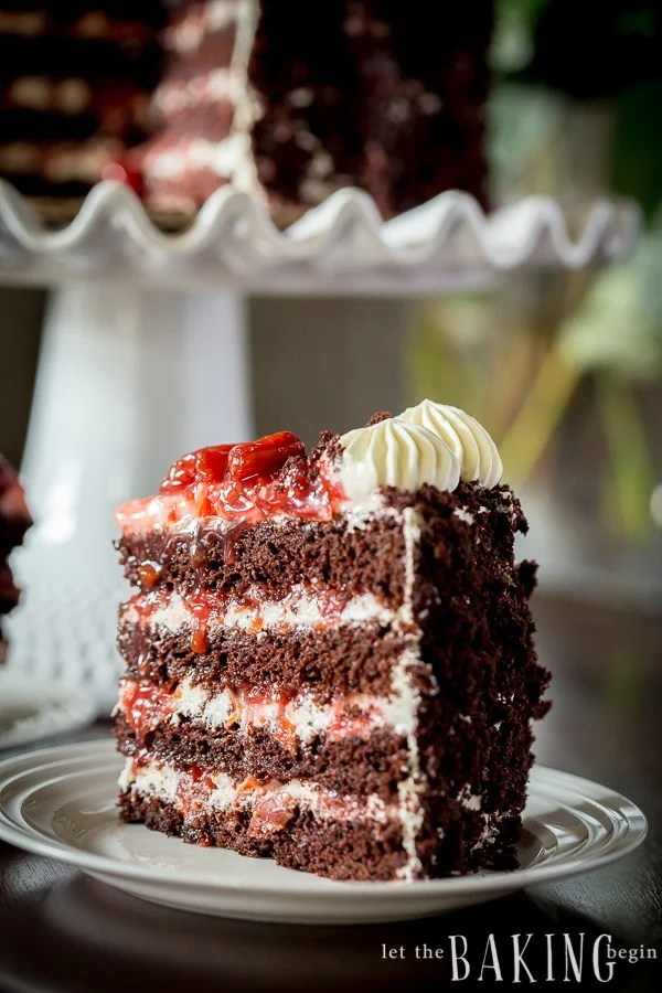 Black Forest Cake - Layers of chocolate cake, sweetened heavy whipping cream and sour cherry filling.   By Let the Baking Begin!