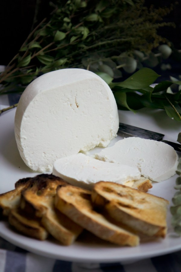 Multi-Cooker Farmer's Cheese - detailed step by step instructions on how to make your own Farmer's Cheese with just 2 Ingredients!