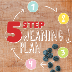Cow & gate 5 step weaning