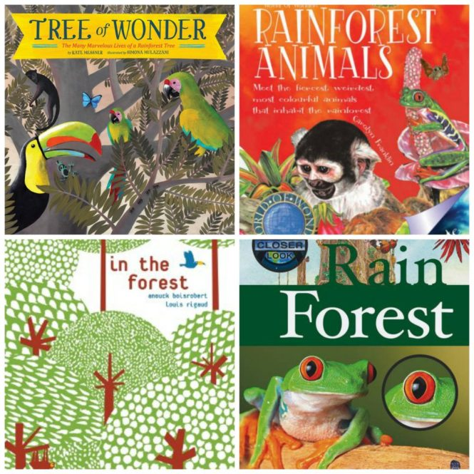 rainforest books