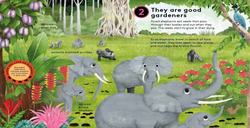 boredom busting books 10 reasons to love an elephant