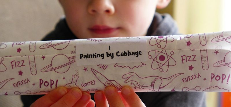 Letterbox lab box four painting by cabbage