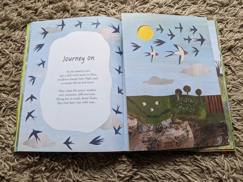 A walk through nature book review